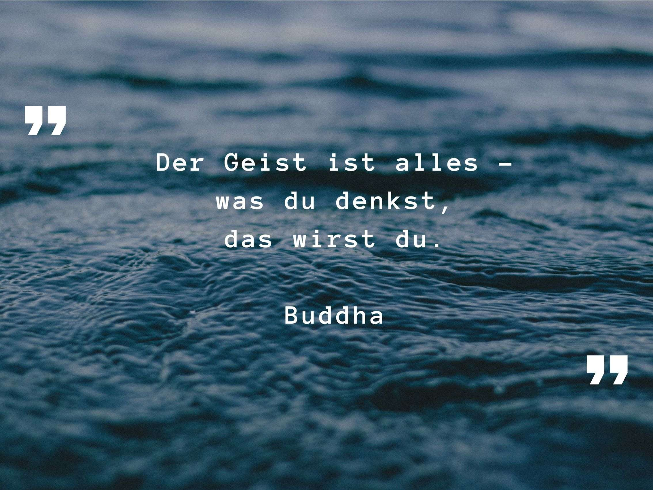Meditationsart_Zitat_Buddha_Oh_Yes_Yoga